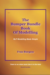 The Bumper Bundle Book of Modelling - NLP Modelling Made Simple